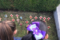 Y5 @ The Cenotaph