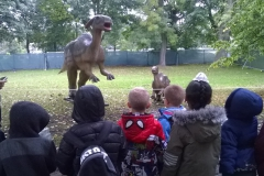 Y1 @ Dinosaur World